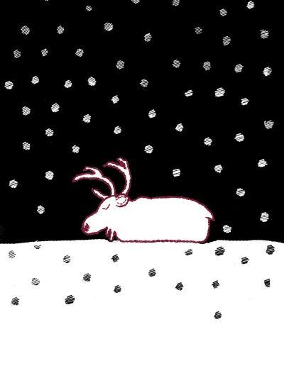 Poro nukkuu / Sleeping reindeer / 眠るトナカイ