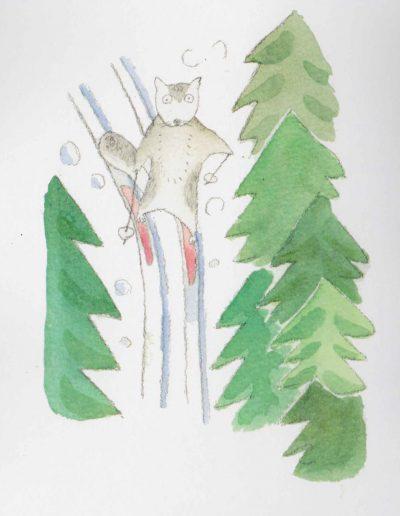 Liito-orava hiihtämässä/Flying Squirrel is skiing/スキーを楽しむモモンガ